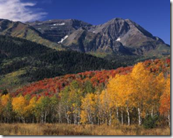 Utah wild lands