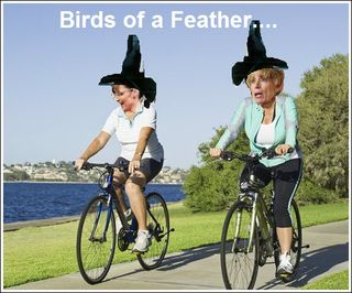 Palinandschlessingerbirdsofafeather